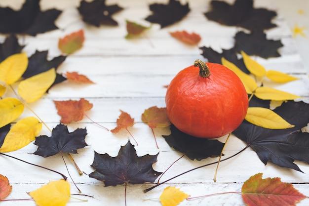 Abóbora e folhas de hokaido na placa de madeira, branca.