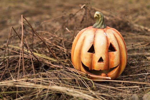 Abóbora esculpida em folhas secas e varas