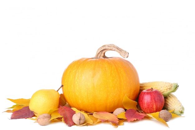 Abóbora laranja com folhas e legumes isolados no branco