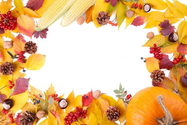 Abóbora laranja com folhas isoladas em um fundo branco