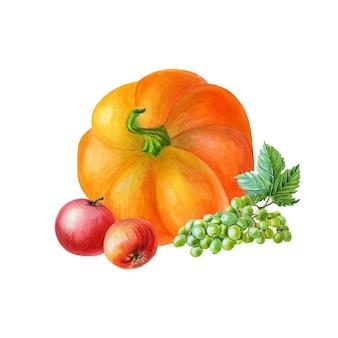 Abóbora laranja com maçãs vermelhas e uvas verdes. ilustração em aquarela sobre fundo branco.