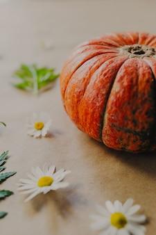 Abóbora laranja em fundo de papel. decorações de halloween com abóbora e flores ao redor.