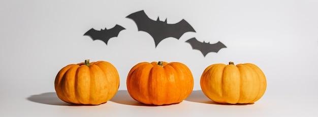 Abóbora laranja madura fresca em fundo branco. espaço com morcegos conceito de halloween