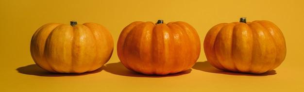 Abóbora madura fresca em fundo laranja. espaço para maquete de texto do conceito de halloween