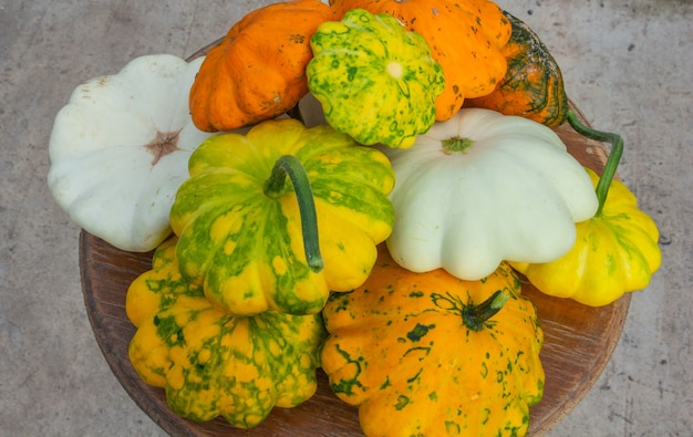Abóbora multicolorida closeup composição de outono conceito de vista superior do dia de ação de graças ou dia das bruxas