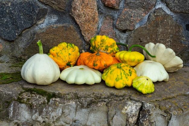 Abóbora multicolorida em um conceito de composição de outono de fundo de granito do dia de ação de graças ou olá ...