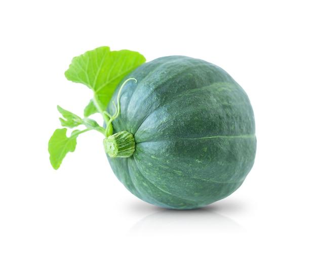 Abóbora verde isolada em um fundo branco