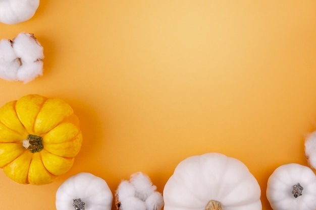 Abóboras brancas e laranjas com flor de algodão