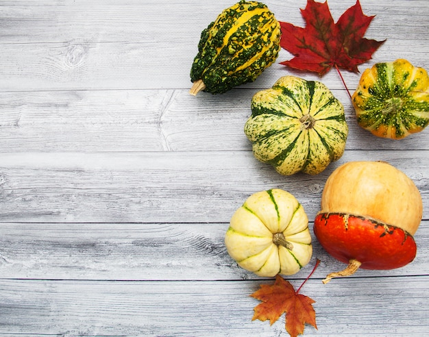 Abóboras com folhas de outono