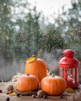 Abóboras cruas laranja com folhas de outono, nozes e uma lanterna acesa