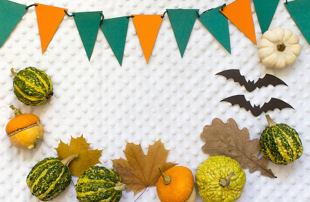 Abóboras de halloween de outono, fundo branco