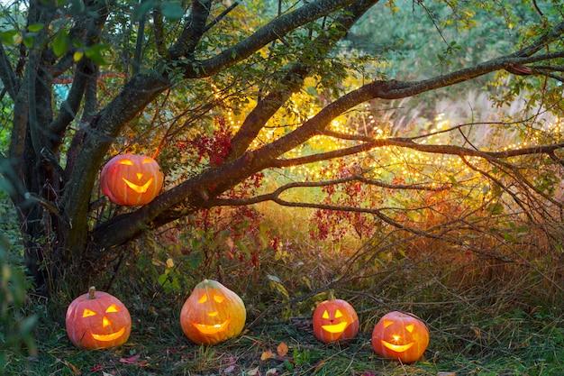 Abóboras de halloween na floresta à noite