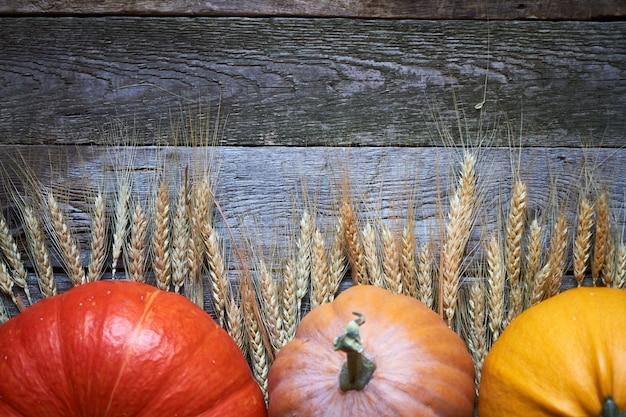 Abóboras de outono close-up e espigas de trigo maduras na mesa de ação de graças