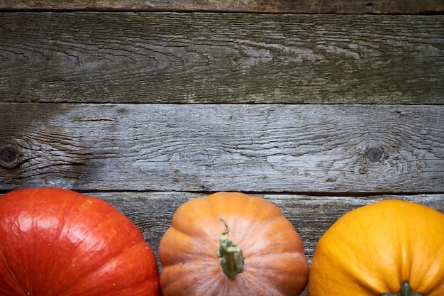 Abóboras de outono close-up na mesa de ação de graças