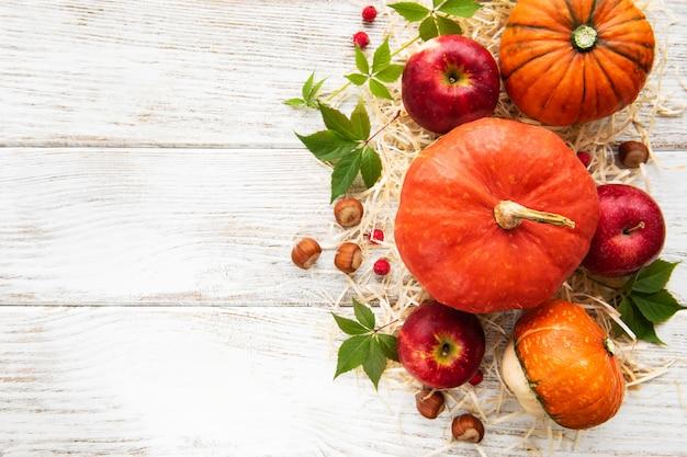 Abóboras de outono coloridas