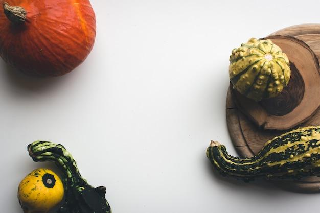 Abóboras de outono em uma placa em um fundo branco