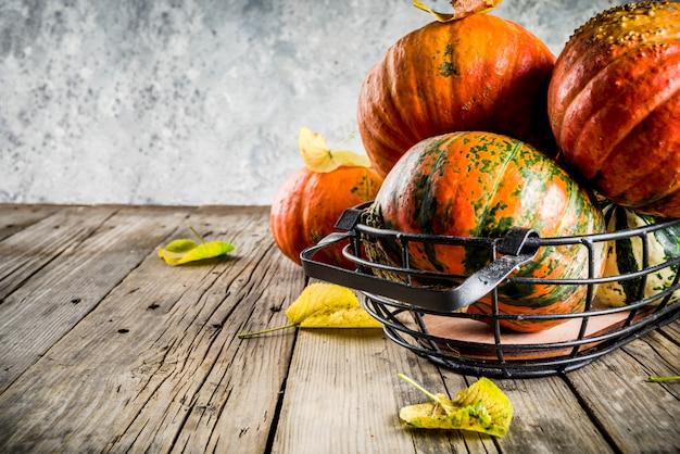 Abóboras de outono em uma tabela