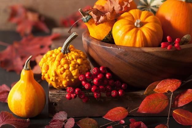 Abóboras decorativas e folhas de outono para o halloween