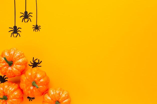 Abóboras e aranhas de festa de halloween