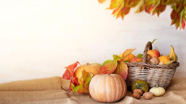 Abóboras e cesta de frutas de outono em um fundo branco de madeira com folhas desfocadas