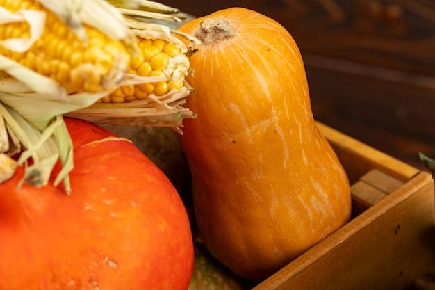 Abóboras e espiga de milho fechadas