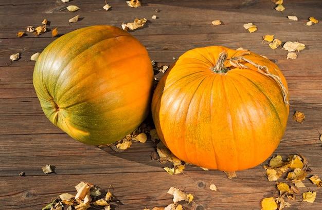 Abóboras em fundo escuro de madeira. abóbora de outono. temporada de ação de graças ainda vida.