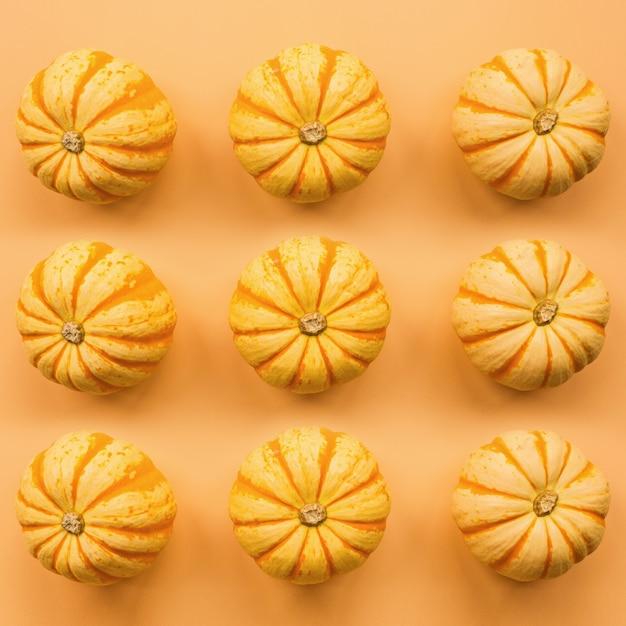 Abóboras em laranja pastel