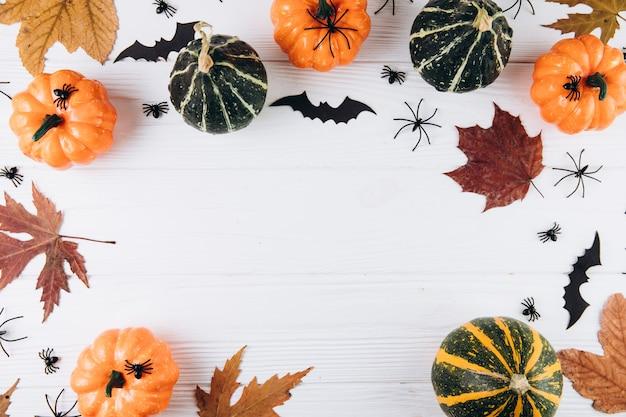 Abóboras, folhas secas, aranhas e morcegos em branco de madeira