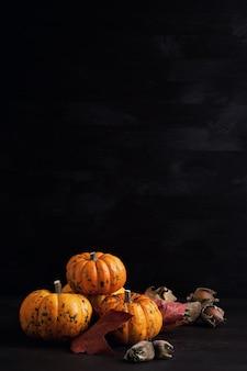 Abóboras laranja para o halloween, ação de graças