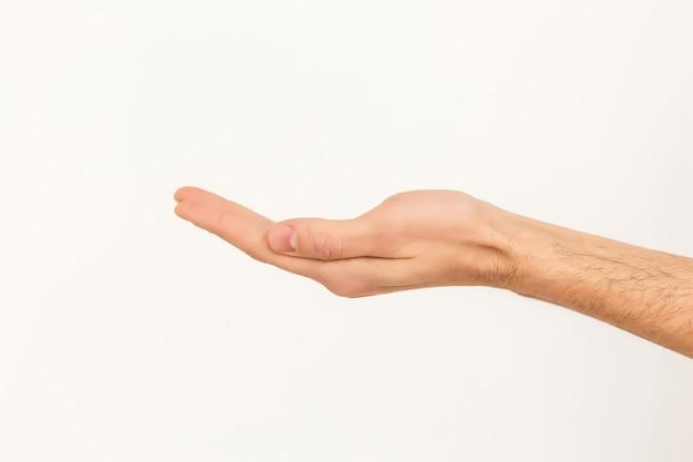 Abra a mão no fundo branco