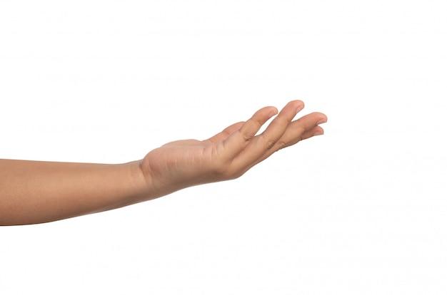 Abra a palma da mão, isolada no fundo branco