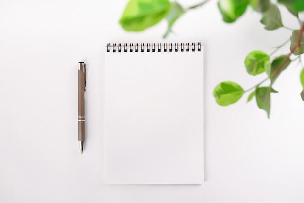 Abra o caderno em branco em espiral, folhas de planta de casa e caneta automática.