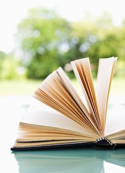 Abra o livro sobre uma natureza leve