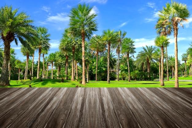 Abra o terraço de madeira com vistas na natureza