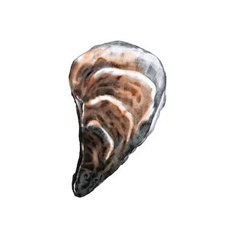 Abrigo de ostras fechado