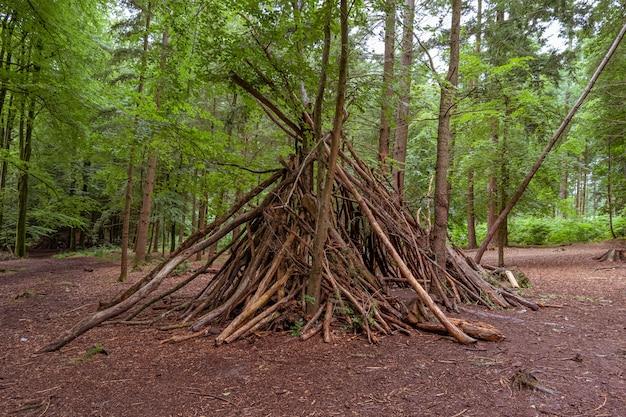 Abrigo feito de galhos de árvores em uma floresta