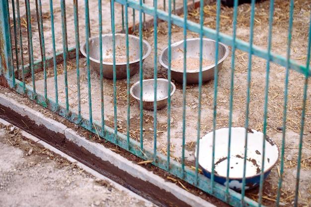 Abrigo para cães. bacias meio vazias com comida de cachorro.
