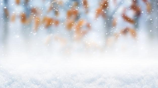 Abstrato base de inverno com neve, nevasca na floresta