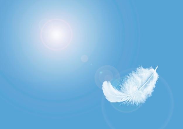 Abstrato, luz fofa uma pena branca flutuando no céu.