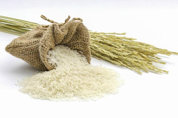 Abundância de arroz de jasmim no saco com orelha de arroz, isolado no branco