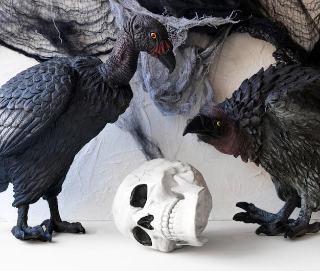 Abutres perto de caveira de brinquedo
