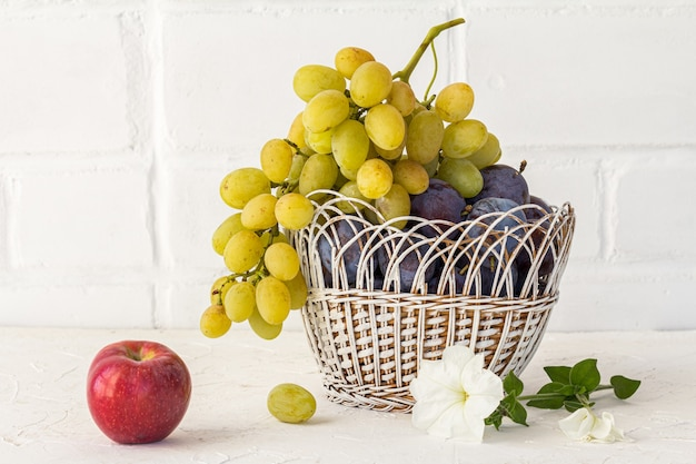 Acabei de colher ameixas maduras e um cacho de uvas brancas maduras em uma cesta de vime, uma maçã e uma flor de petúnia no fundo branco. apenas frutas colhidas.