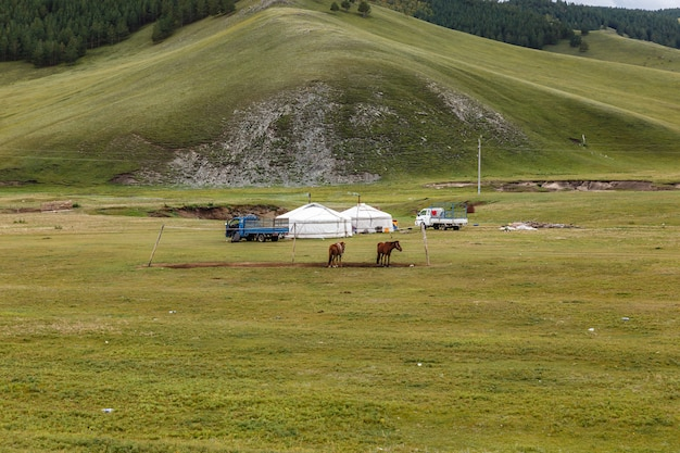 Acampamento nômades mongóis
