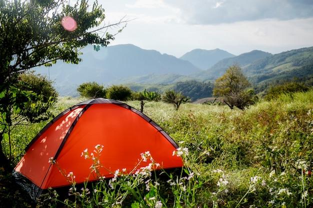 Acampando em uma floresta. cena da manhã com tenda turística na floresta verde perto do lago. estilo de vida ao ar livre. foco seletivo.
