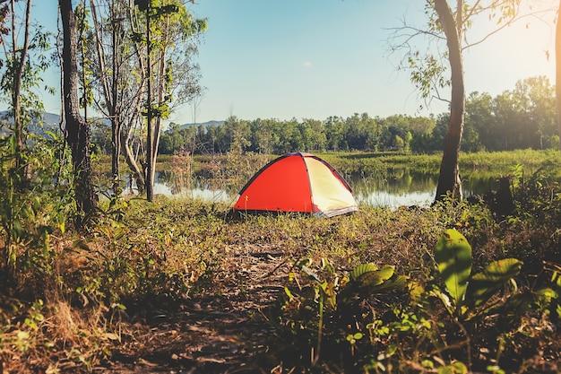 Acampando em uma floresta. cena da manhã com tenda turística na floresta verde perto do lago