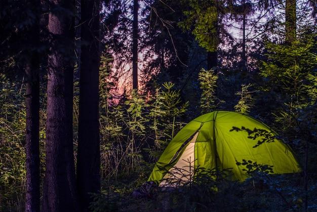 Acampando em uma floresta