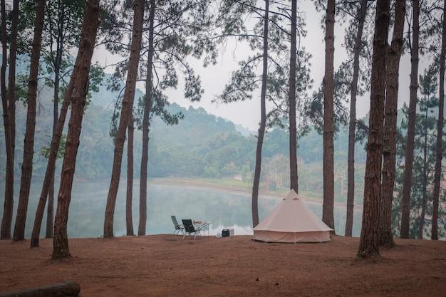 Acampar na floresta em um lago