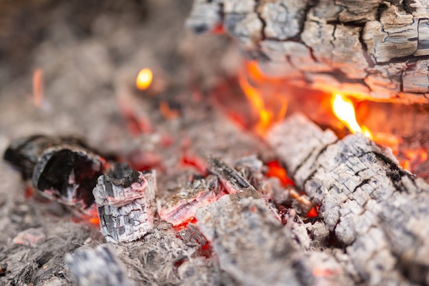 Acendendo o fogo na floresta para acampar.