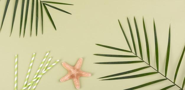 Acessórios de praia com conchas e estrelas do mar em uma superfície colorida