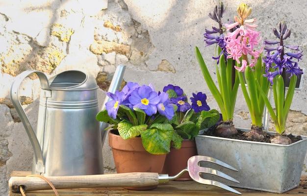 Acessórios em uma mesa de jardim em frente a uma parede chapada